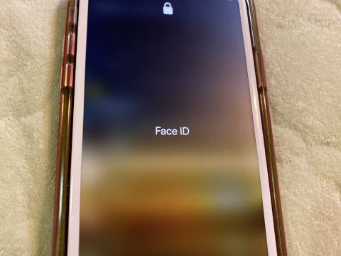 iPhone11 Face ID